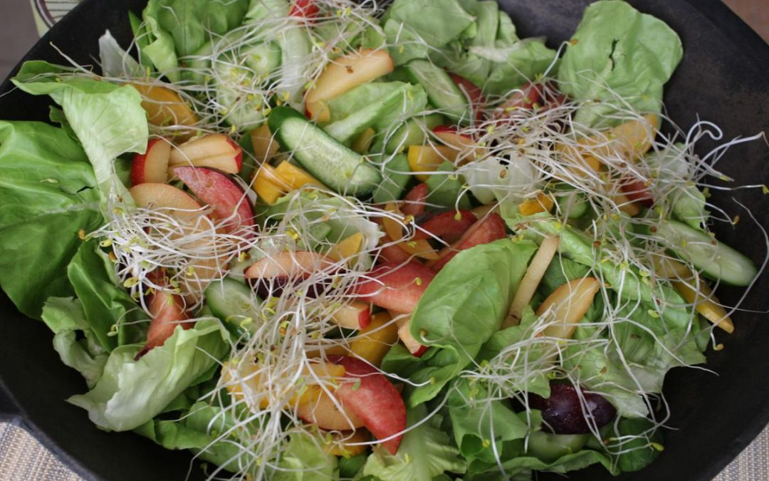 Tri-color plum salad