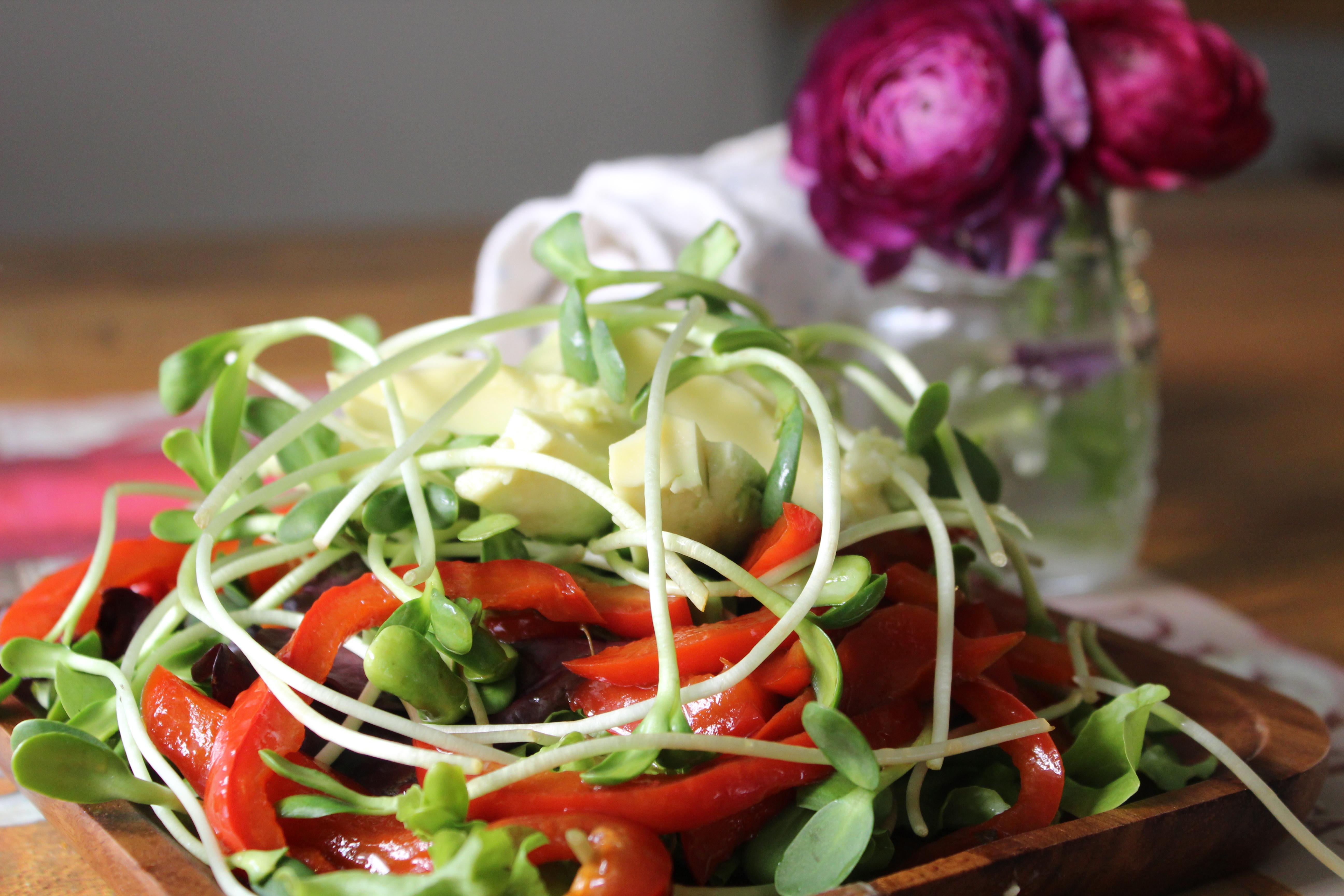 peashoot-salad